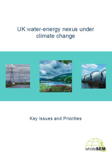 UK nexus report cover image